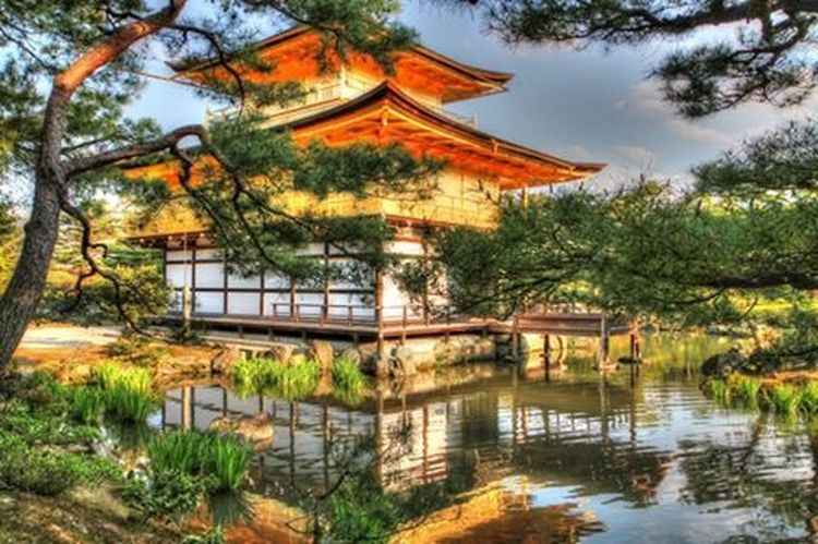 Japan Nara,Japan Japanese Culture Japanese Garden Japanese Temple At 鹿苑寺(金閣寺) Kinkaku-ji Temple Japanese Style Travel Photography