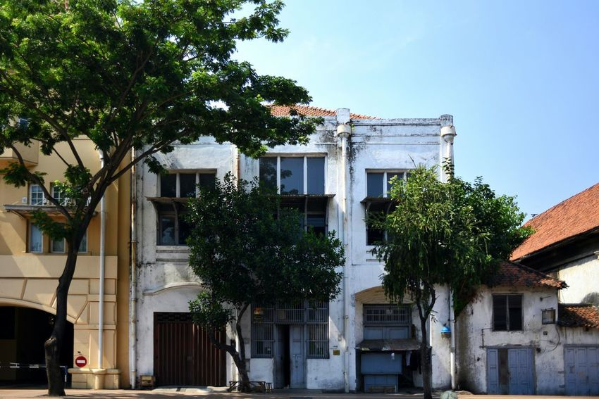 Old buildings in Surabaya, East Java, Indonesia. Tree Building Exterior Architecture Built Structure Outdoors Day No People Sky Clear Sky House Old Architecture Old Building  Old Town City Old Buildings Architecture Surabaya INDONESIA