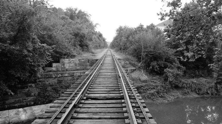 Black & White Black And White Photography Black And White Collection  Railroad Bridge Built Structure Railroad Tracks River Vanishing Point Water The Way Forward Day Tree Outdoors No People Rail Transportation Tupponce Photography David Tupponce Bridgeville PA Pennsylvania USA United States Of America USA Graffiti Wall Railroad Track Iron