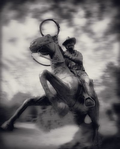 Yee-Haw!! Horse Tadaa Community Streamzoofamily AMPt_community NEM Black&white Fortheloveofblackandwhite Monochrome Bnw_friday_eyeemchallenge Bnw_friday_challenge EyeEm Bnw