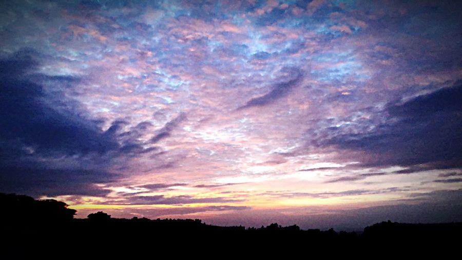 Colourful clouds 😍 Blue Sky Pink Nature Lover Colourful Clouds Colourful Cloud - Sky Sky Beauty In Nature Scenics - Nature Tranquility Silhouette Tranquil Scene Sunset Dramatic Sky Environment Nature Low Angle View