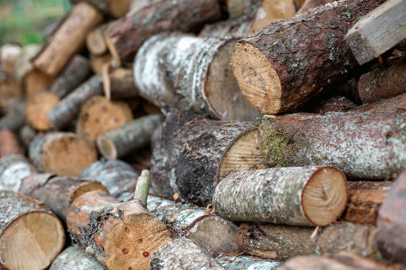 Log Stack Tree Timber Firewood Wood - Material Deforestation Large Group Of Objects Fossil Fuel Forest Lumber Industry No People Close-up Nature Wood Full Frame Selective Focus Abundance Fuel And Power Generation Backgrounds Outdoors Woodpile
