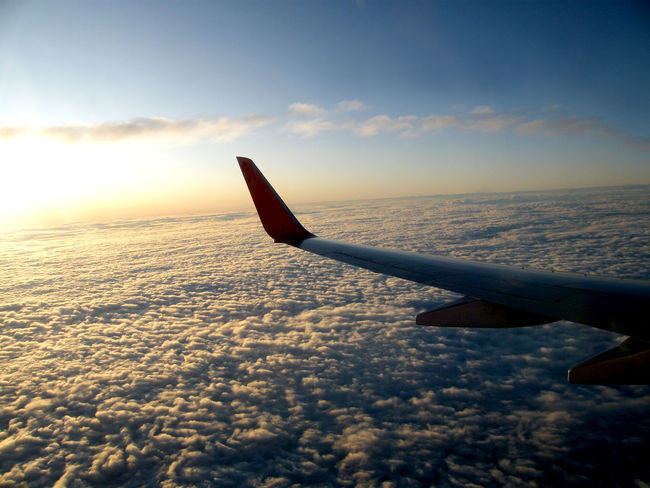 The airplane flies over the clouds like a bubbly cloud in the evening. Bubbly Lost In The Landscape Aerial View Air Vehicle Aircraft Wing Airplane Airplane Wing Beauty In Nature Beauty In Nature Cloud - Sky Day Fluffy Clouds Flying Journey Mode Of Transport Nature No People Outdoors Scenics Sky Sunset Transportation Travel