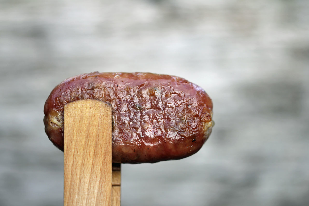 CLOSE-UP OF MUSHROOM GROWING ON WOOD AGAINST CLOUDY SKY