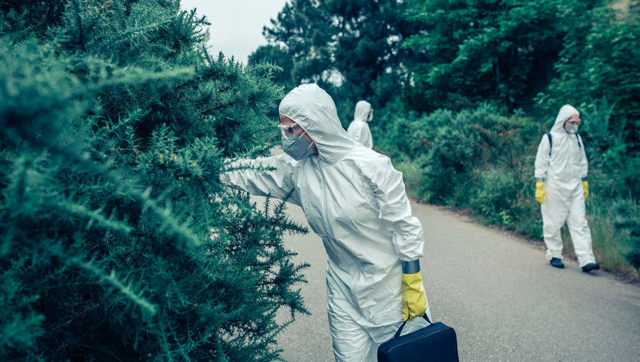 People wearing protective suit standing by trees on road