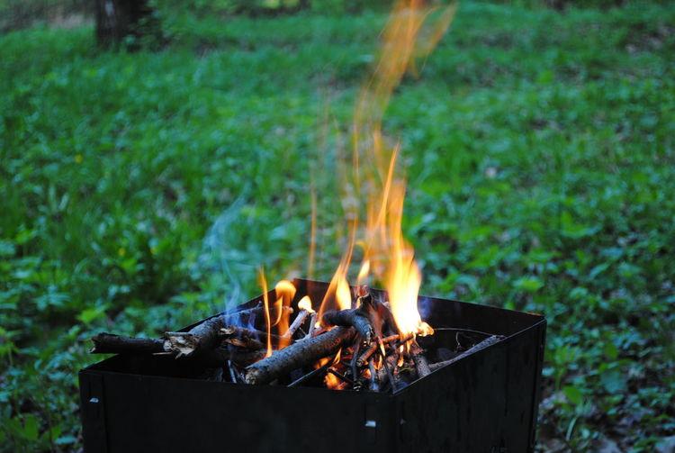 пламя Лес поляна Природа костер мангал шашлыки отдых пожар безопасность