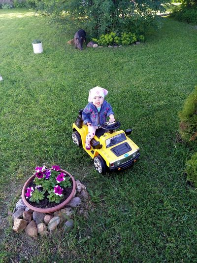 My daughter is riding a car Beautiful Child Day Flower Full Length Grass Her Car High Angle View Nature No People Outdoors Sitting The Girl In A Jeep The Girl In Her Car Yellow Car