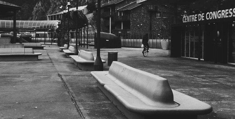 Bench By Walkway At Park