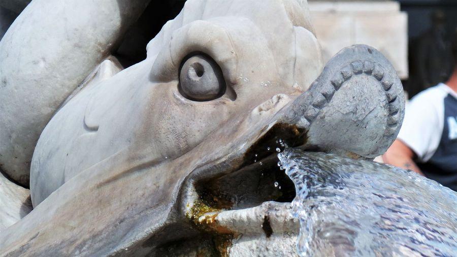 Fountain Moving Around Rome Fontana Fontana Di Piazza Colonna Sculpture Statue Water