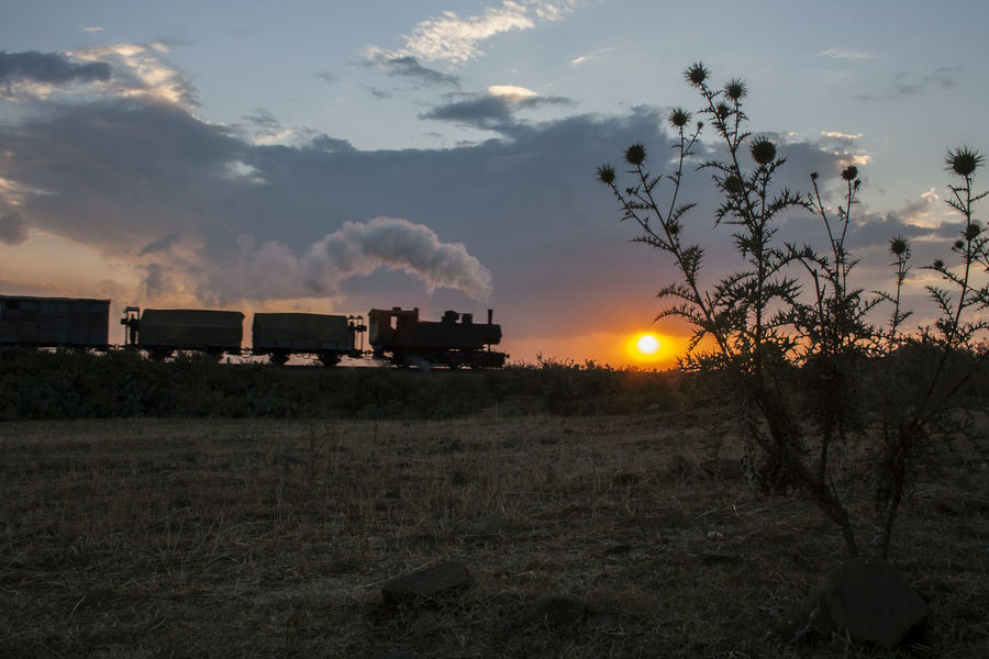 Steam pulled tain near Asmara in sunset Asmara Dramatic Sky Eritrea Eritrean Railway Beauty In Nature Cloud - Sky Day Field Freight Train Historic History Landscape Nature No People Oldtime Outdoors Scenics Sky Steam Locomotive Steam Train Sun Sunrise Sunset Thistle Tree
