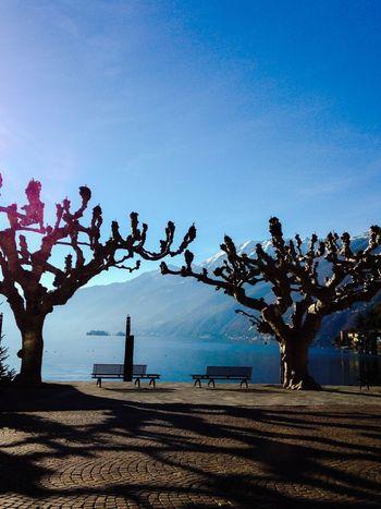Autumn and Sun at the Lake Lago Maggiore