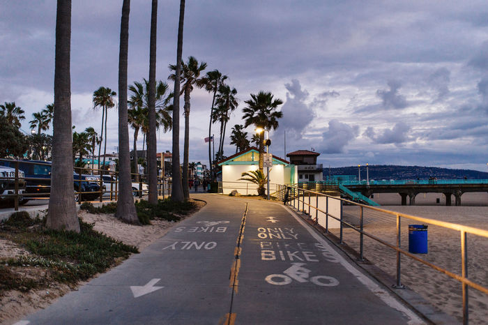 Architecture Beach Bike Ride Building Exterior Built Structure Capital Cities  City Composition Direction Famous Place Guidance Leading Narrow Outdoors Palm Trees Perspective Pier Road Marking Sky Street Light Tall Tall - High The Way Forward Travel Destinations Vanishing Point