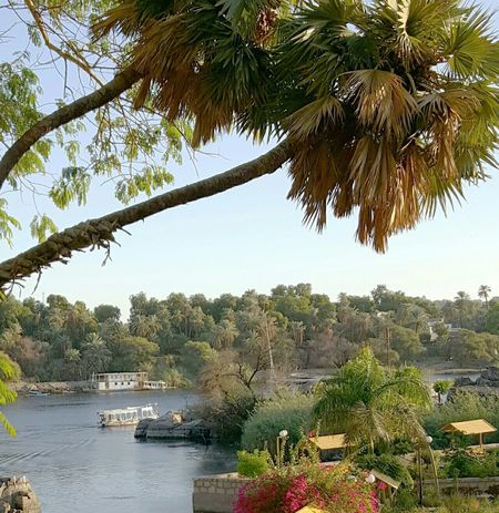 Egypte The Nile River Aswan Egypt Nature_collection Beauty Nature
