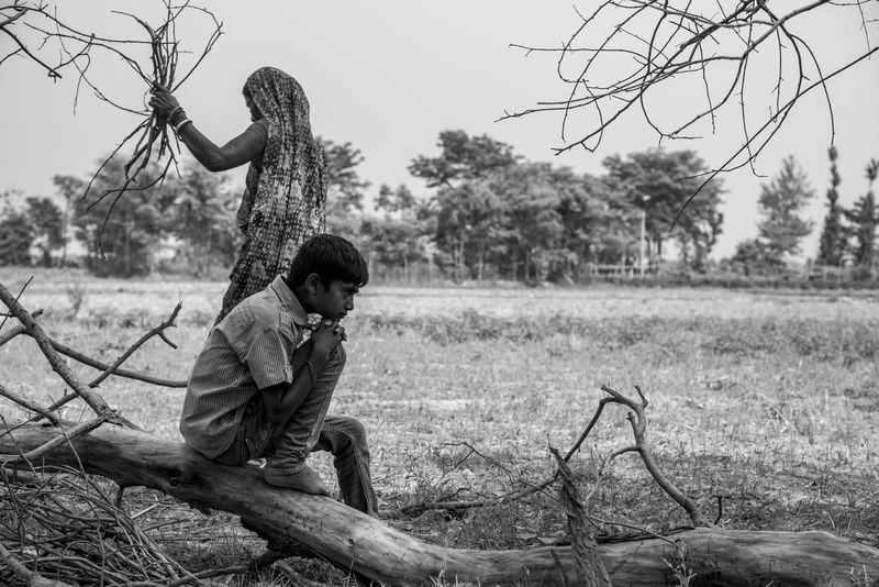 A young boy sitting in a gloomy mood agter his favourite tree has been cut down. Global Warming Tree Bonding Childhood Conservation Cute Environment Family Fell Down Field Love Outdoors Real People Togetherness Tree