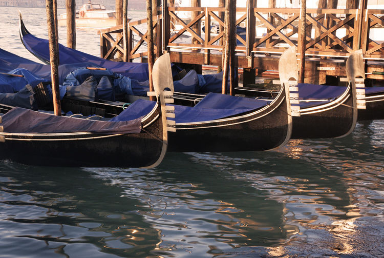 Gondolas on Grand Canal in Venice Venice Venice, Italy Venezia Italy City Cityscape Landmark Famous Place Travel Destinations Gondola Gondole In Venice Nautical Vessel Water Mode Of Transportation Gondola - Traditional Boat Outdoors Wooden Post No People Day