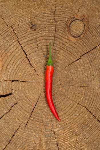Chili  Chili Pepper Food Hot No People Purchase Red Red Pepper Spicy Wood