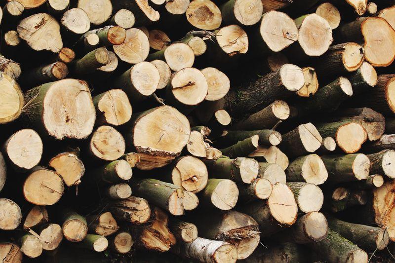 Full frame of firewood