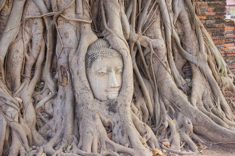 Ancient Ancient Civilization Day Growth History Human Representation Male Likeness No People Old Ruin Outdoors Place Of Worship Religion Sculpture Spirituality Statue Tourism Travel Travel Destinations