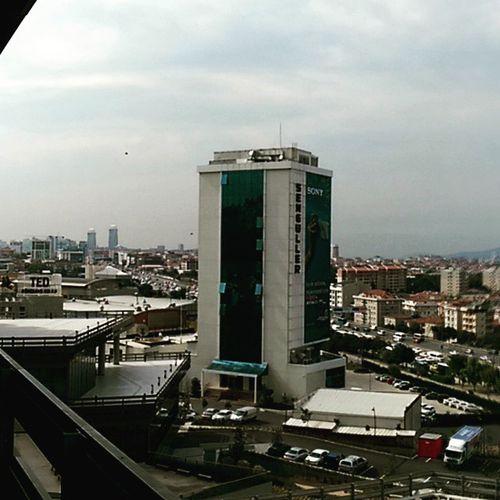 Senguller uzaktan bir bakak dedik Kucukyali Istanbul Color