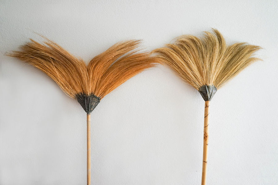 Brooms  Close-up Focus On Foreground Nature No People Stem Studio Shot White White Background