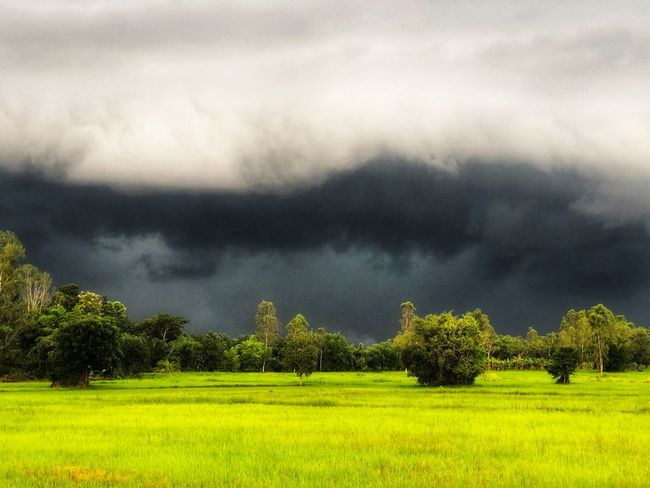 Sky before rain Green Background Wall Mountain Season  Dark Atmosphere Horzon Rainy Season Verdant Rain Plant Cloud - Sky Tree Beauty In Nature Landscape Scenics - Nature Field Environment Tranquil Scene Sky Green Color Nature Outdoors