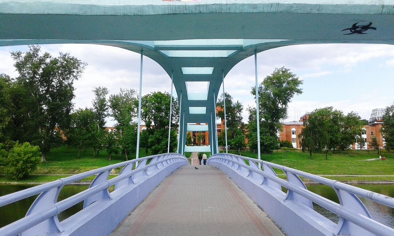tree, bridge - man made structure, architecture, built structure, the way forward, day, transportation, sky, no people, grass, outdoors, nature