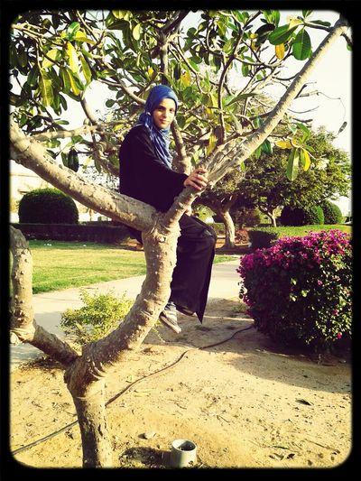 تصويري  اختي Safiy.sos حفيدة المتنبي