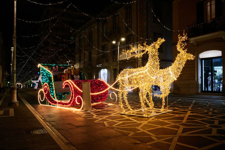 People standing by illuminated christmas lights at night