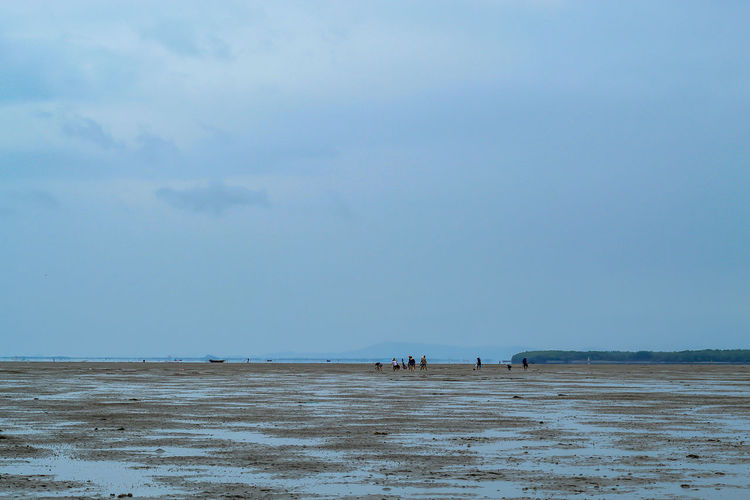 Tourists looking for Snail shells on the sea floor mud. Beach Beauty In Nature Cloud - Sky Day Group Of People Horizon Horizon Over Water Idyllic Incidental People Land Nature Non-urban Scene Outdoors Scenics - Nature Sea Sky Tranquil Scene Tranquility Unrecognizable Person Water