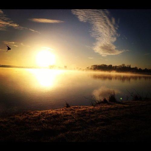 morning sun. First Eyeem Photo