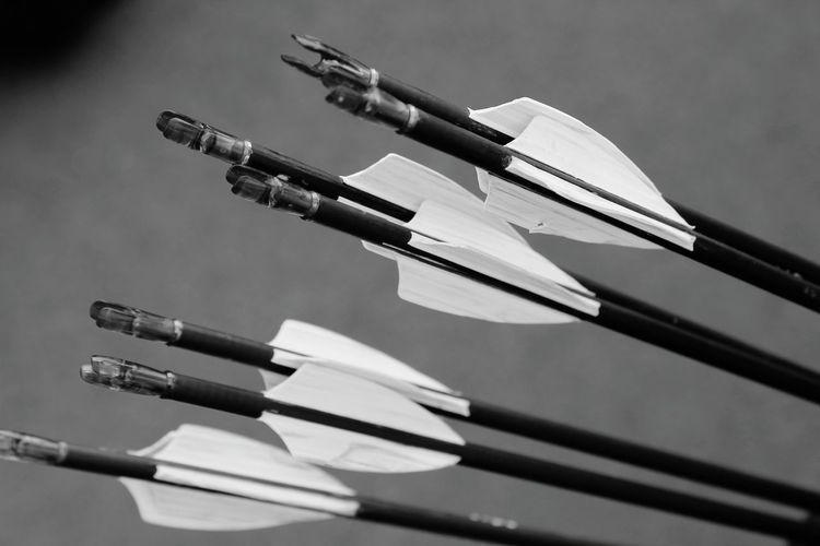Close-Up Of Arrows