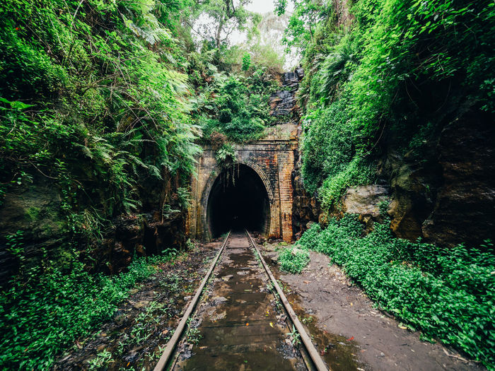 Abandoned Beauty In Nature Day Derelict Green Color Growth Nature No People Outdoors Plant Rail Transportation Railroad Track The Way Forward Tranquility Tree Tunnel Tunnels Urbex