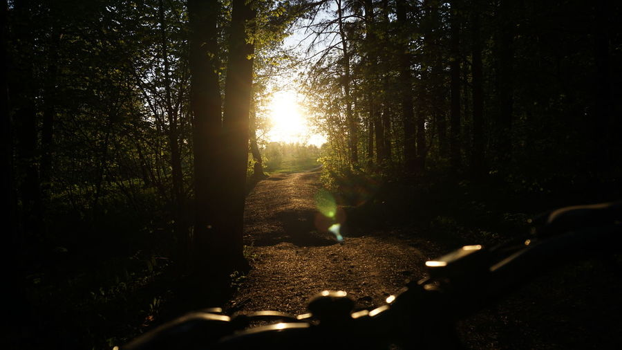 Beauty In Nature Bike Bycicle Bysicle Forest Growth Land Lens Flare Nature No People Non-urban Scene Outdoors Plant Scenics - Nature Silhouette Sky Sun Sunbeam Sunlight Sunset Tranquil Scene Tranquility Tree WoodLand