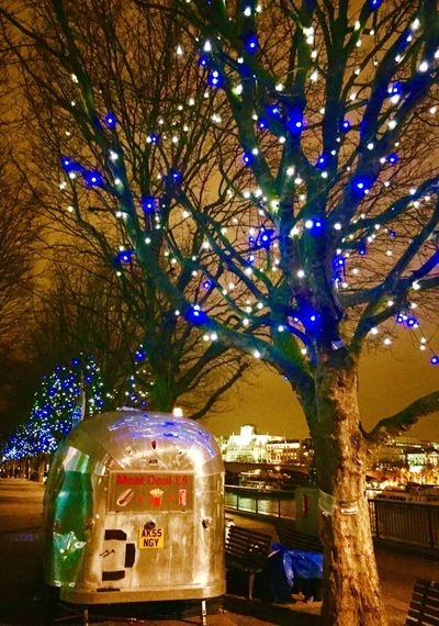 Londonsouthbank Jan 2017 London Illuminated Tree Riverside Nightphotography Night Lights