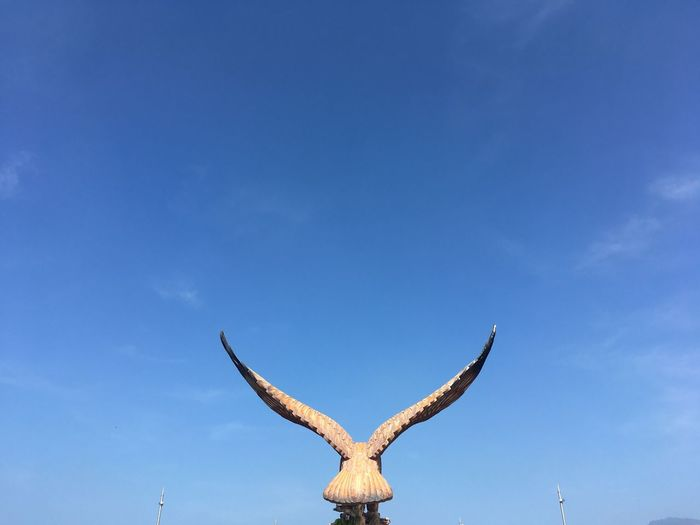 Low angle view of deer on blue sky
