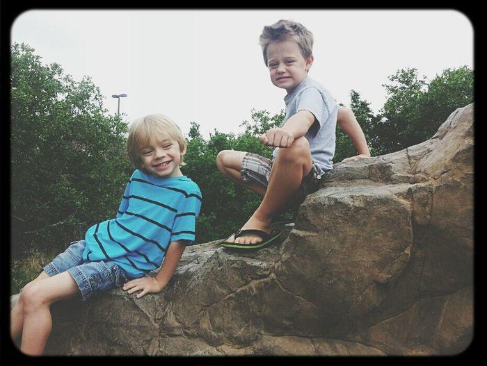 The Nephews