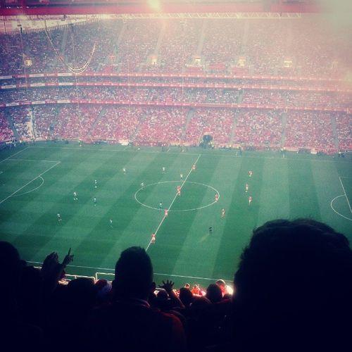 No place like home Infernodaluz Benfica Slb Derbyda2Circular ReiArtur EpicFail