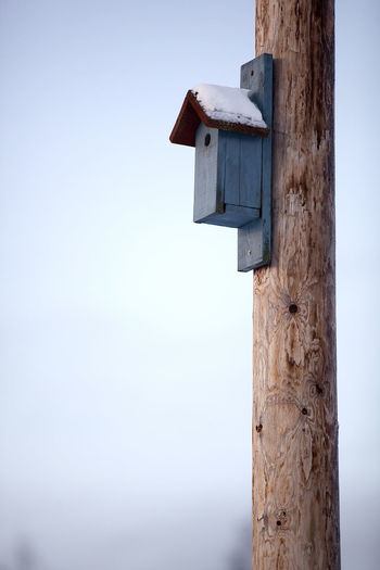 Birdhouse Wood - Material No People Day Wooden Post Focus On Foreground Post Sky Nature Tree Trunk Trunk Outdoors Pole Built Structure Close-up Tree Blue Architecture Clear Sky Metal Holiday Moments