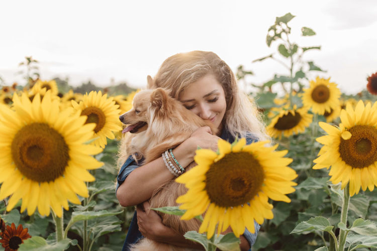 Young woman with sunflower on yellow flowering plant