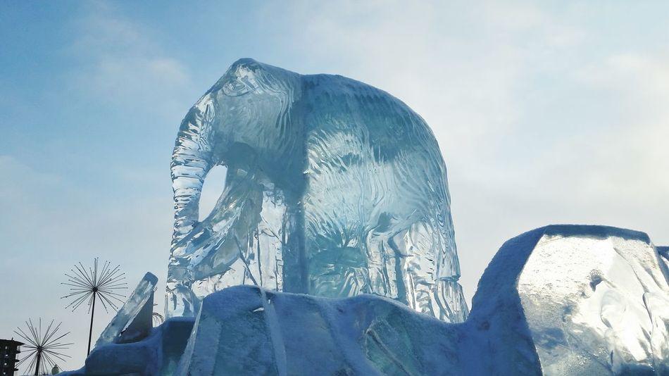 Мамонт, ледовый городок, г.Ханты-Мансийск Ice Mammoth Siberia My Town мойгород дыхание севера сибирь мамонт