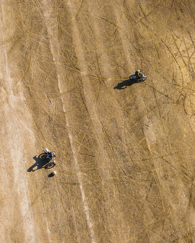 High angle view of people skiing on land