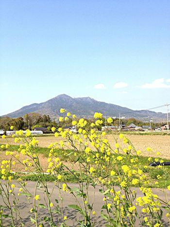 Beautiful Mountains Landscape 眺め