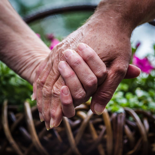 seniors holding hands Adult Close-up Day Holding Holding Hands Holding Hands Of The Seniors Human Body Part Human Finger Human Hand Leisure Activity Lifestyles Man Men Outdoors People Real People Senior Adult Senior Man Senior Women Wrinkled Skin Wrinkled Hand