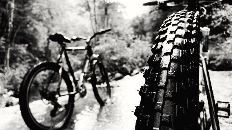 Cyling Bicicle Bicycle Bicicleta Cylist Bikelife Bikelove Biketour Bike Trip Bikeride Roadtrip Cycle Bike Tour Bike Life Mtb Love MTB Biking Wild Bikestagram Photography Blackandwhite Black & White
