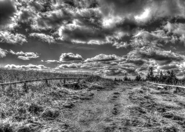 EyeEm Best Shots - HDR EyeEm Best Shots - Black + White Bw_collection Hdr_Collection