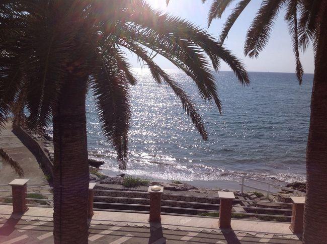 Sea Circeo Summer People