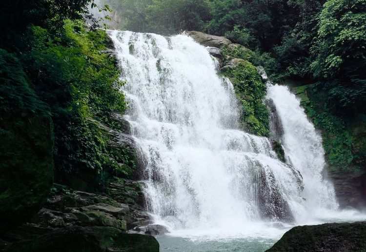 Waterfalls Nature_collection Lifestyles Lovelife Hike Stunning Nature WOW Nature Nature Photography Costa Rica Exploring No People Nature Beauty In Nature Forest Motion Scenics Water Waterfall Outdoors Day
