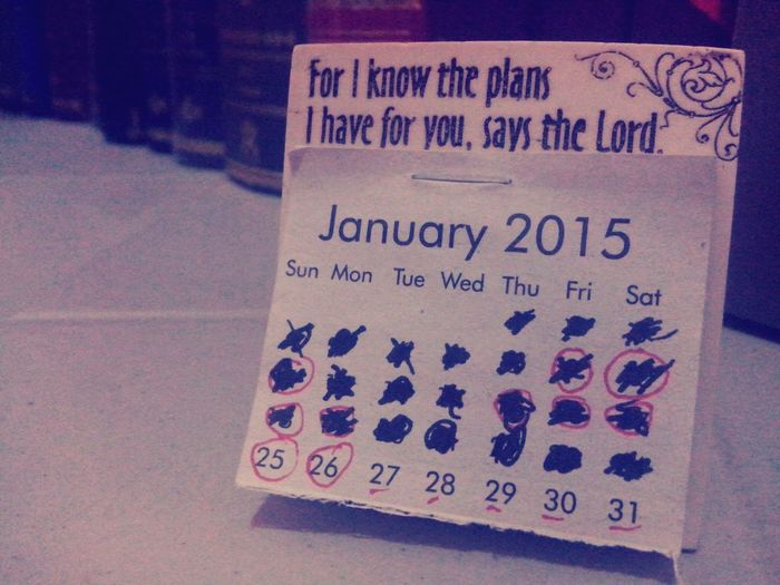 Inmypanicroom January2015 Calendar Taking Photos Wildeyes