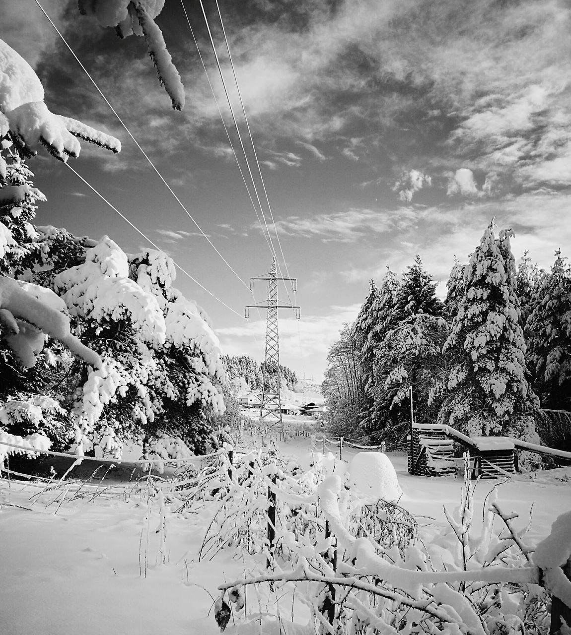 winter, snow, cold temperature, nature, weather, sky, tree, cable, outdoors, day, no people, beauty in nature, scenics, electricity pylon, ski lift