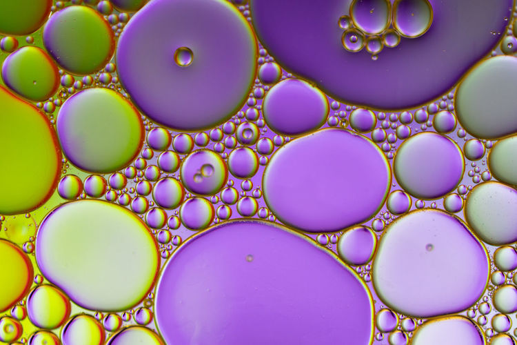 Bubbles, droplets, oil in water Abstract Photography Bubbles Colors Colourful Colours Green Macro Photography Abstract Backdrop Bubble Bubbles In Water Colorful Colour Droplet Droplets Macro Multi Colored No People Oil In Water Pattern Purple